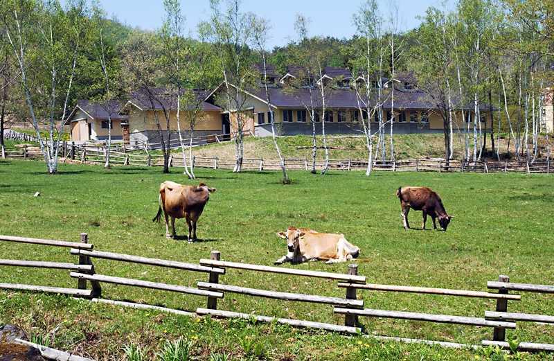 奥飛騨山之村牧場