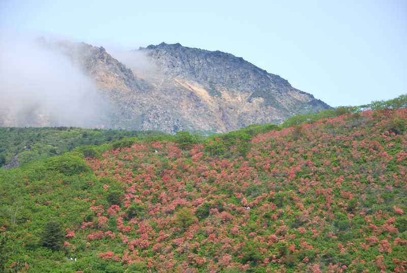 恵山の画像