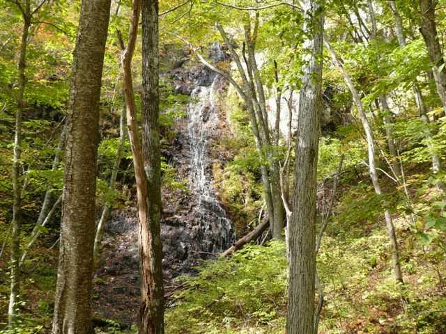 耗山国有林十二神自然観察教育林
