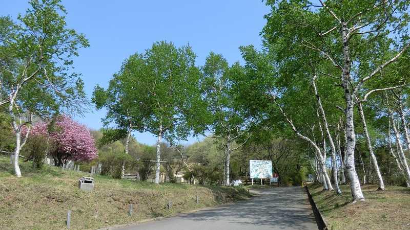 背あぶり山(会津東山自然休養林)