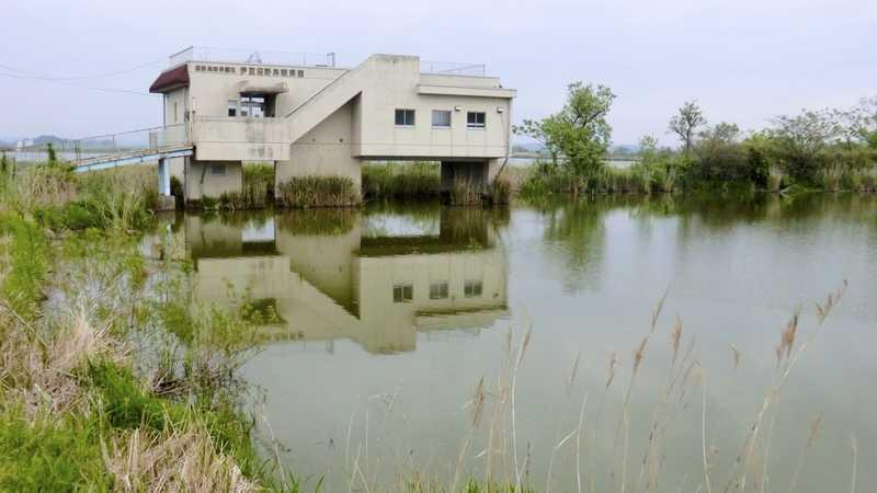 伊豆沼野鳥観察館