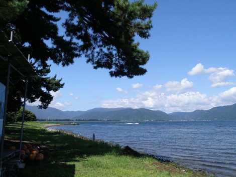 今津浜水泳場の画像 青松の美観が目に鮮やか湖国百景のひとつに選ばれている「湖西の松林」が立...