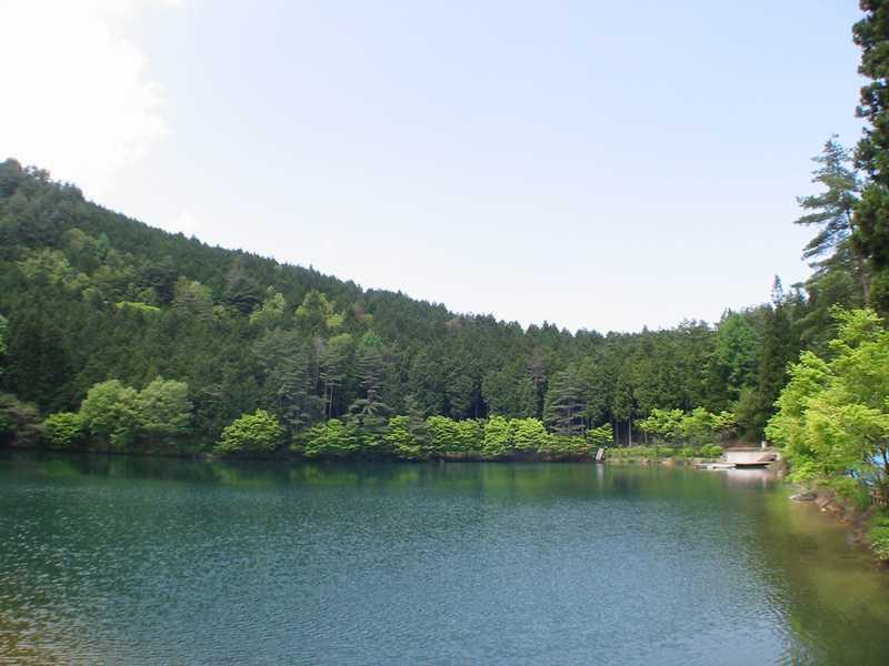 県民の森伊奈ヶ湖