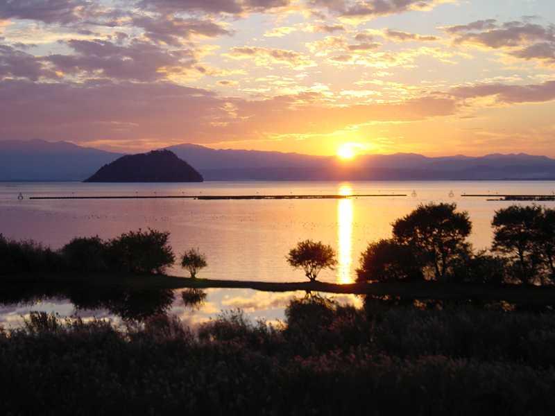 湖北水鳥公園