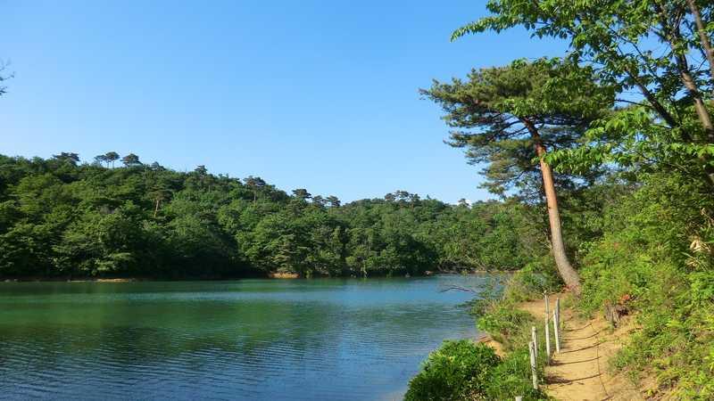 浦田の森森林公園