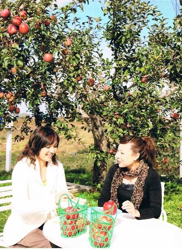 黒石観光りんご園りんごの国