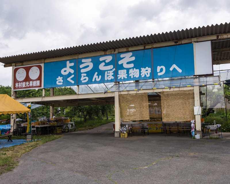木村観光果樹園