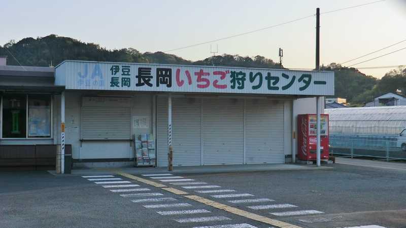 伊豆長岡いちご狩りセンター