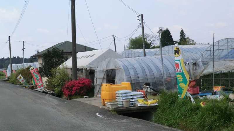 吉村観光農園