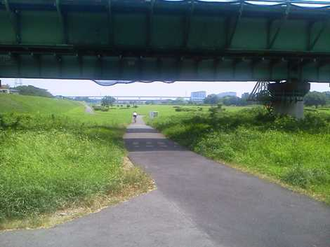 自転車歩行者専用道路の画像 p1 ...