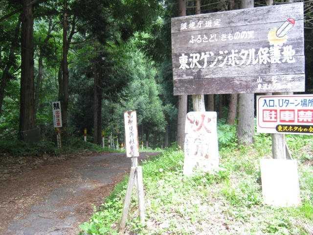 東沢ゲンジボタル保護地