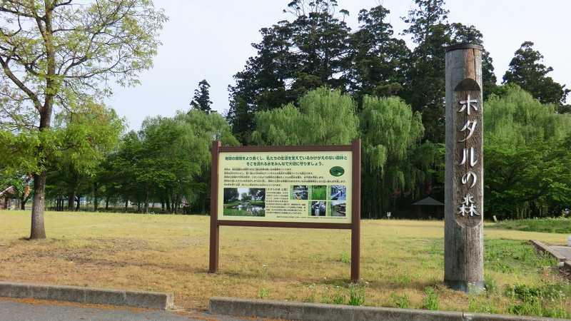 やすらぎ広場ホタルの森公園