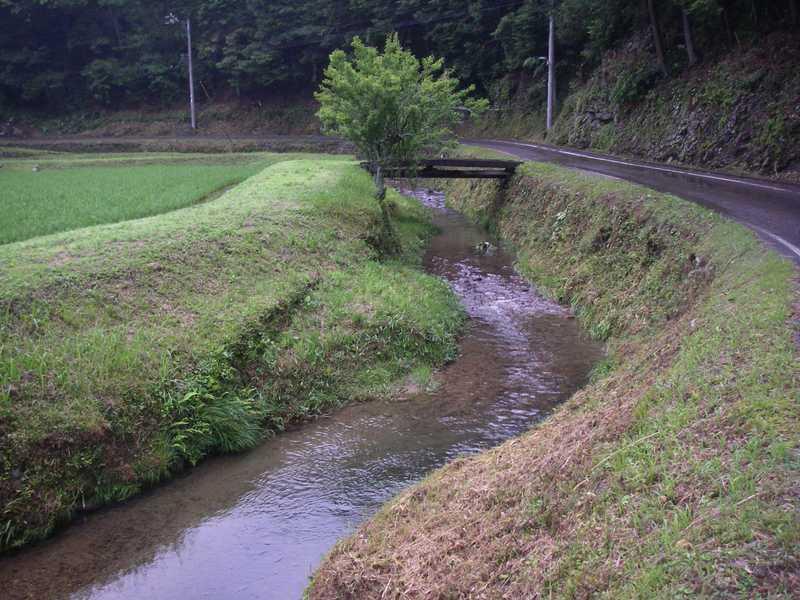 間見川周辺