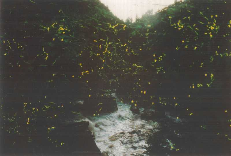 栗田川沿い