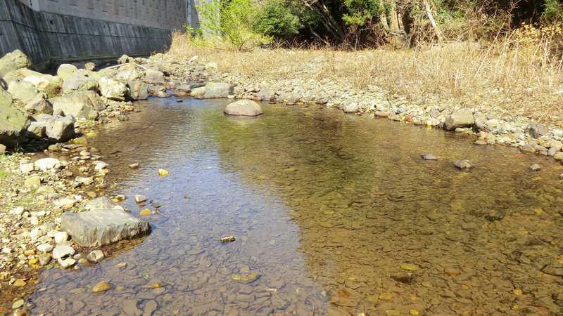 阿須川沿い