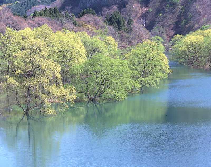 錦秋湖の画像