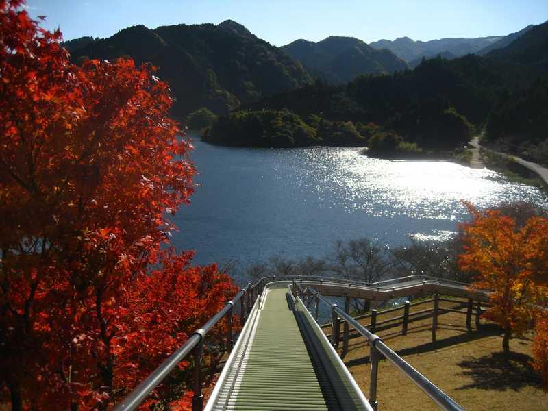 錫杖湖の画像
