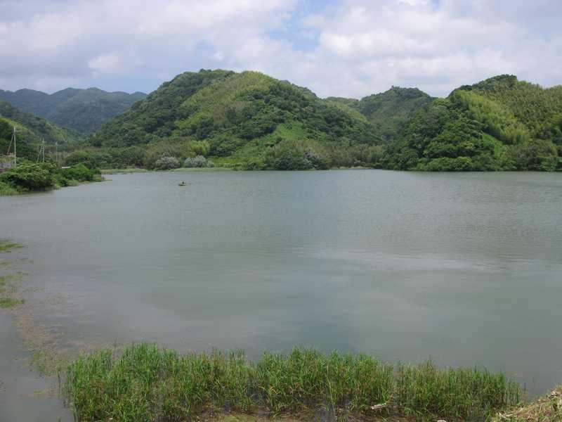 桜池の画像