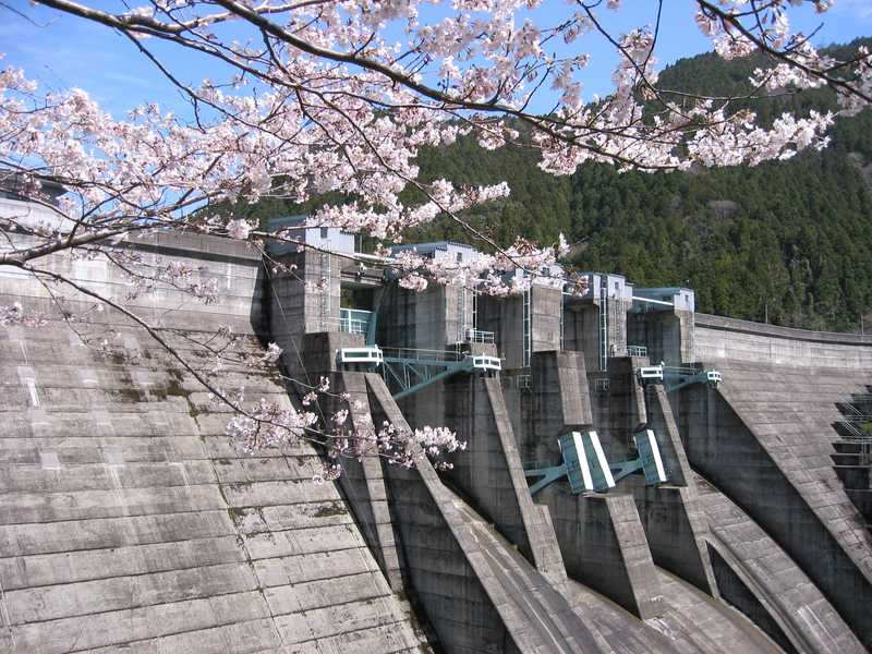 二川ダム湖