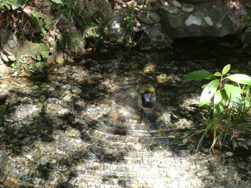 黒部川扇状地湧水群