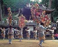 大杉ざんざこ踊