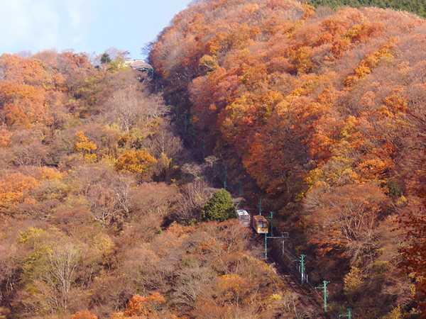 妙見の森ケーブル
