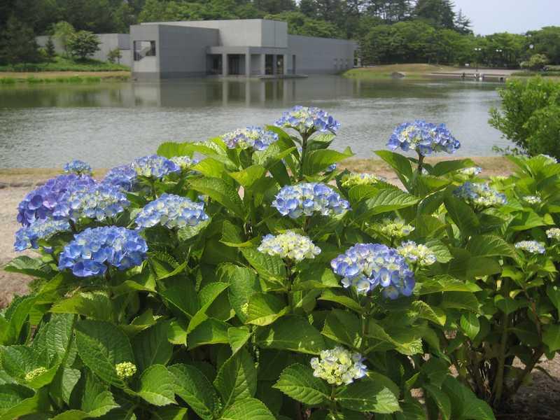 飯森山公園