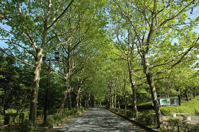 びわこ文化公園文化ゾーン