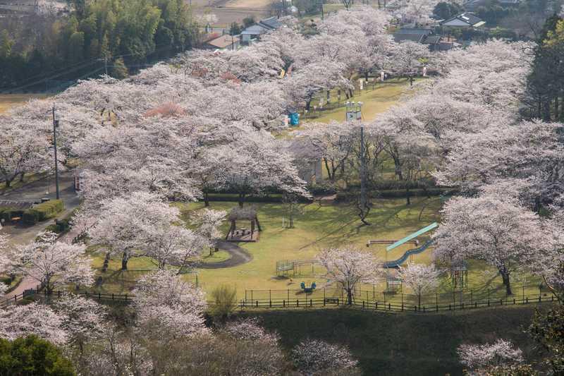 母智丘関之尾公園