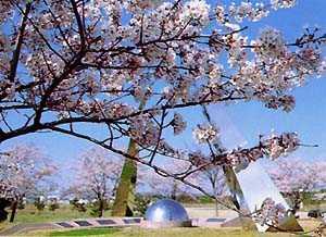 南の池記念公園