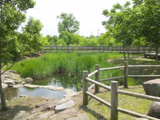 合併記念見沼公園の画像 埼玉県さいたま市大宮区天沼町1-847(住所検索) | いつもNAVI