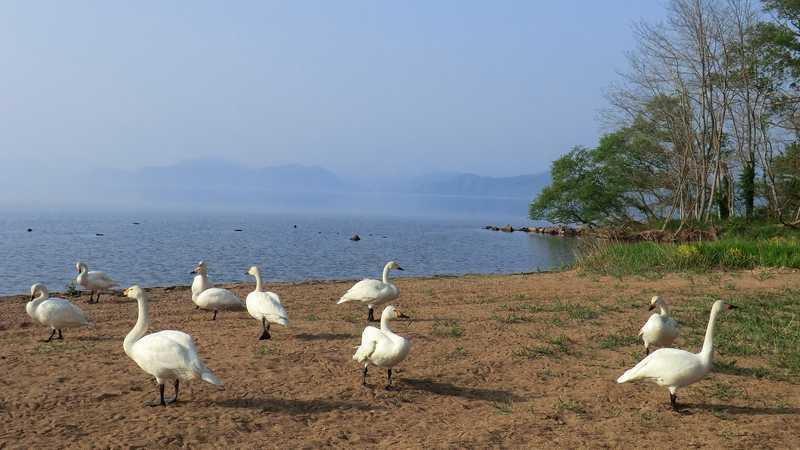 蟹沢浜湖水浴場