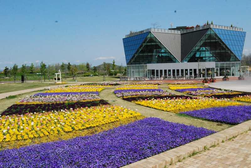国営木曽三川公園江南花卉園芸公園