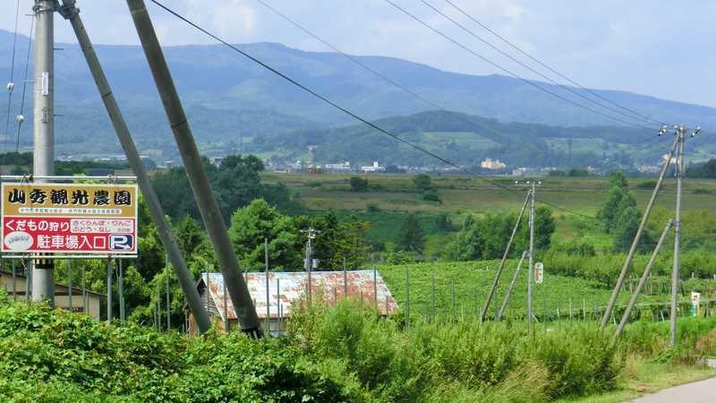 山秀観光農園