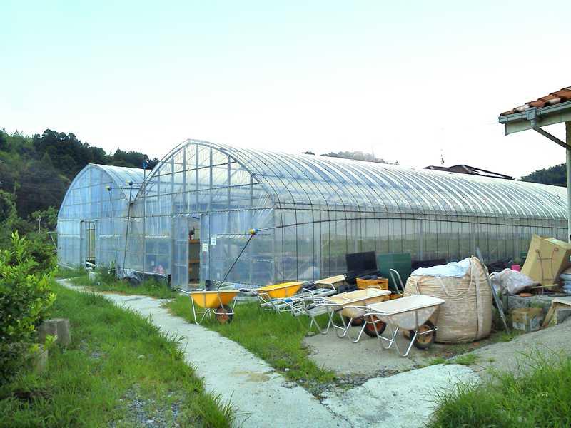 筑紫野いちご・いちじく農園