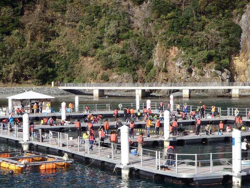 大島海洋体験施設うみんぐ大島