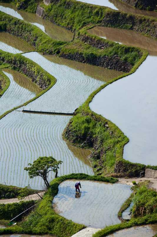土谷棚田の画像
