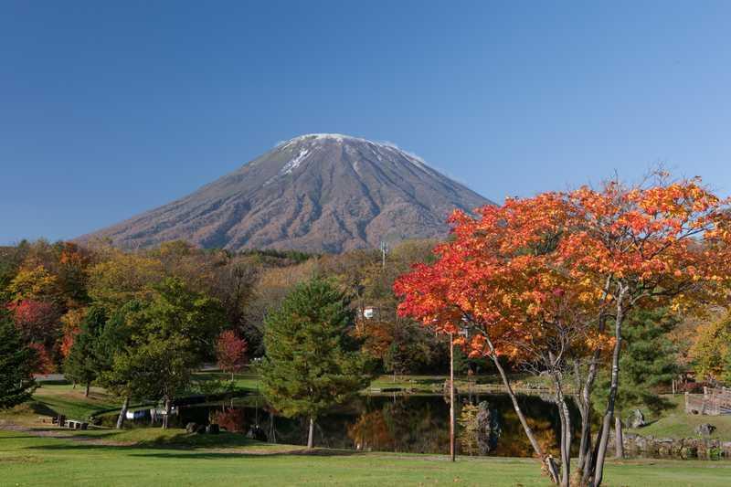 京極町のふきだし湧水