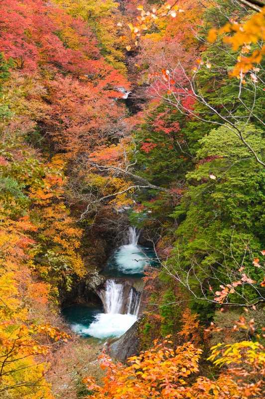 七ツ釜五段の滝(西沢渓谷)