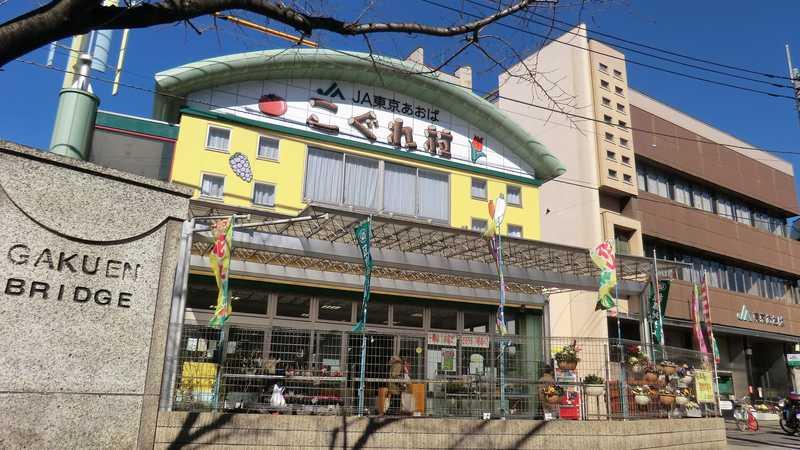 JA東京あおばこぐれ村の画像