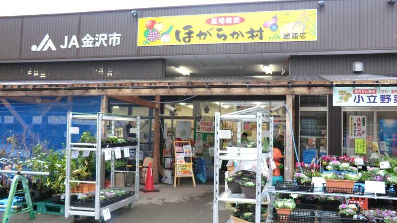 JA金沢市ほがらか村崎浦店