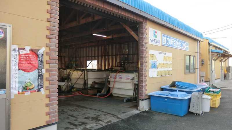 JF鐘崎鐘の岬活魚センター