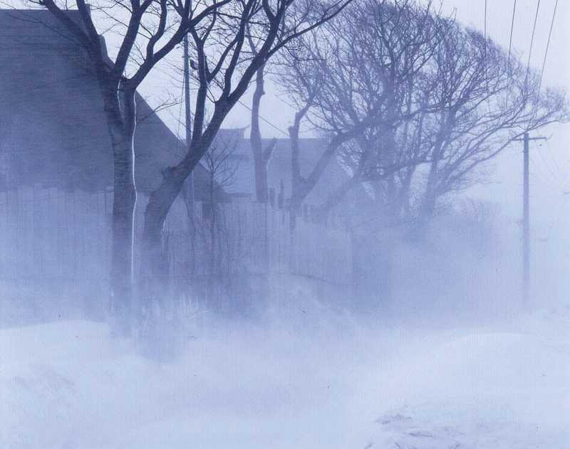 雪国地吹雪体験