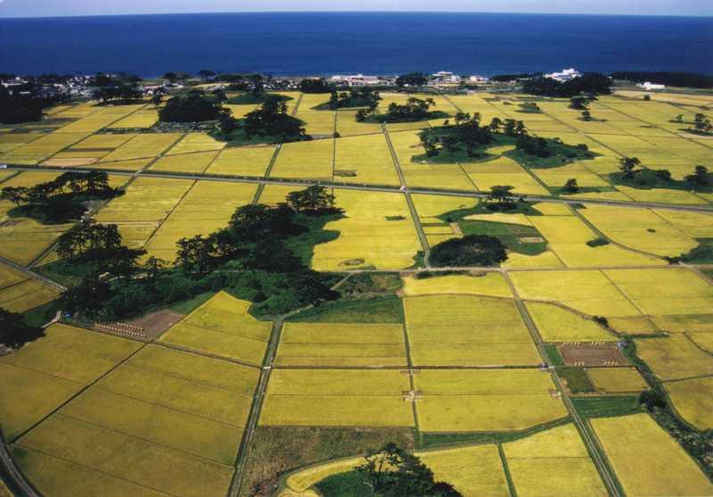 九十九島の画像