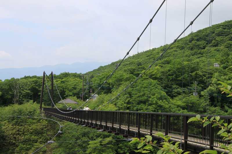 つつじ吊橋の画像