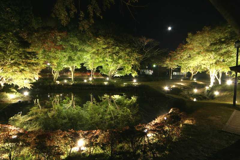 曽木公園もみじライトアップ