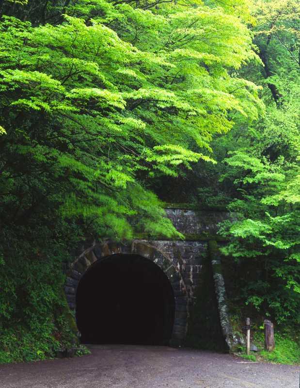 旧天城街道 旧天城トンネル