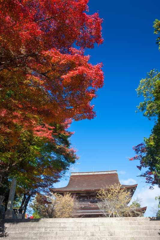 吉野山参詣道