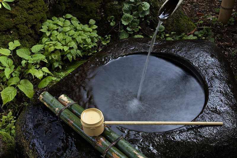 ニテコ清水