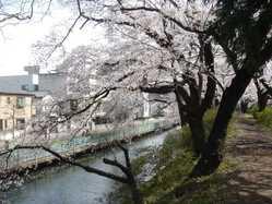 高崎城址公園の画像